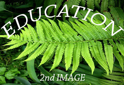 Services - Education_Fougeres